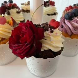 Bäckerei Schoder Cupcakes